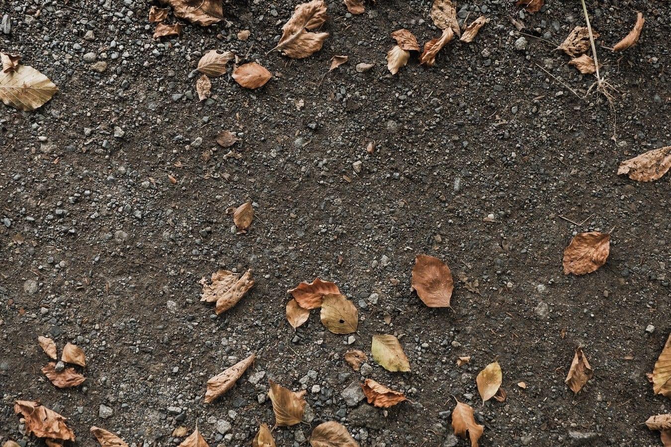 Schone grond verklaring kosten grond afvoeren verplicht