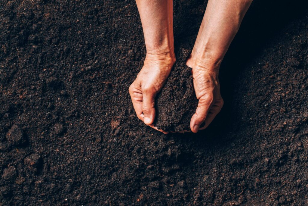 zwarte grond tuinaarde kopen bestellen